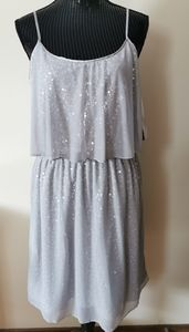 Betsy & Adam Silver Gray Sequence Dress Size 14